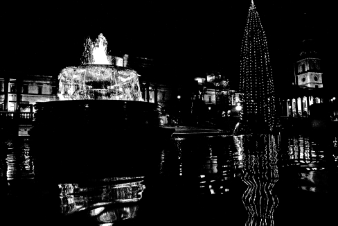 Trafalgar Square Christmas tree and foundation.